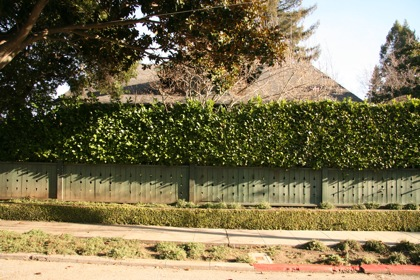 You'd think this was a busy street, with that high fence and shrubs.  It isn't...